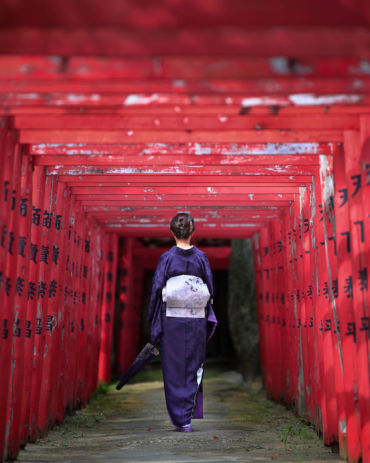 The vermilion torii world